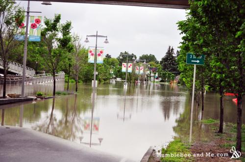 13-06-21-flood-pic32
