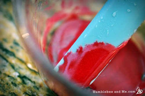How to Make Rosehip Lip Gloss