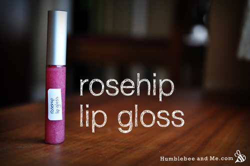 Rosehip Lip Gloss