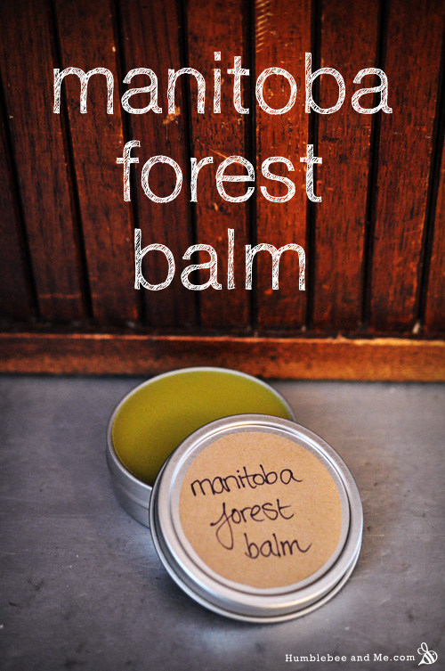 How to Make Manitoba Forest Balm