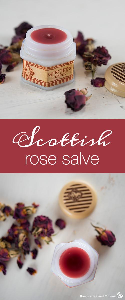 How to Make a Scottish Rose Salve