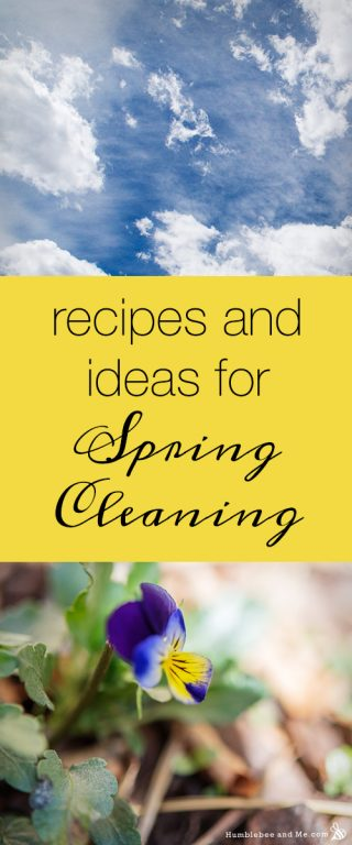 Recipes & Ideas for Spring Cleaning