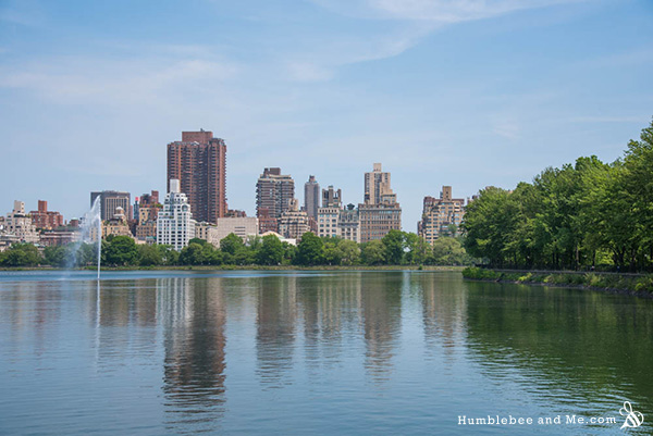 I finally managed to walk the entire length of Central Park in one go!