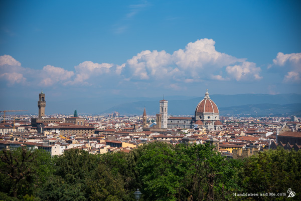 Florence from the Piazzale Michelangelo.