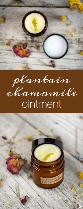 Plantain Chamomile Ointment