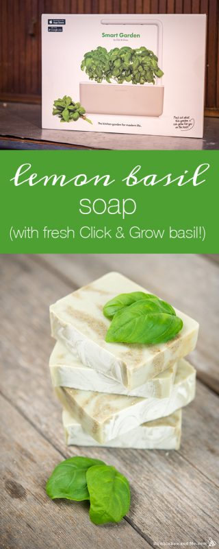 Lemon Basil Soap (with fresh Click & Grow basil!)