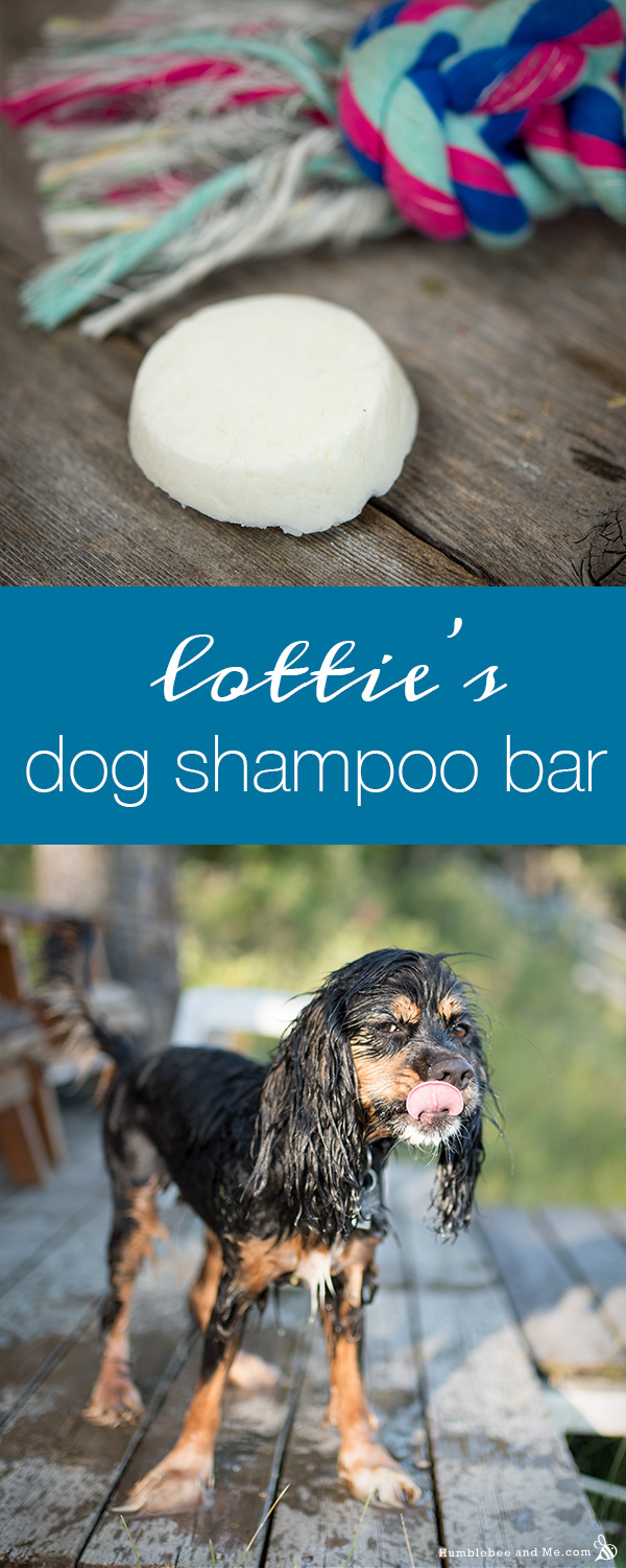 How to Make Lottie's Dog Shampoo Bar