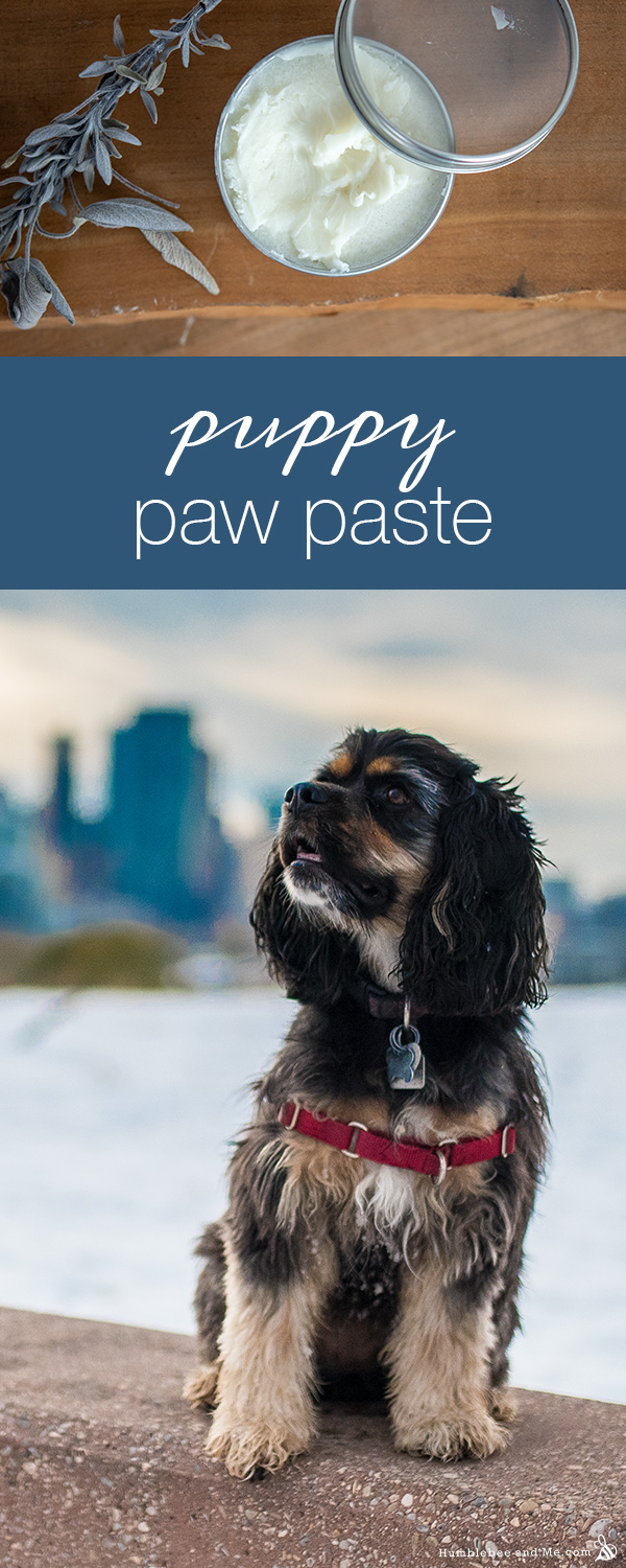 How to Make Puppy Paw Paste