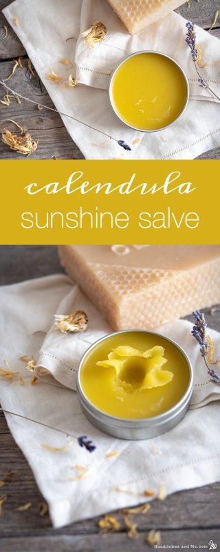 Calendula Sunshine Salve