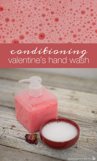 Conditioning Valentine's Hand Wash