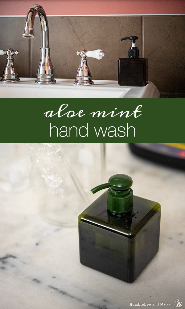 How to Make Aloe Mint Hand Wash